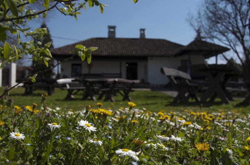 Дани европске баштине: ОД ЗЛАТА ЈАБУКА - Ранчићева кућа