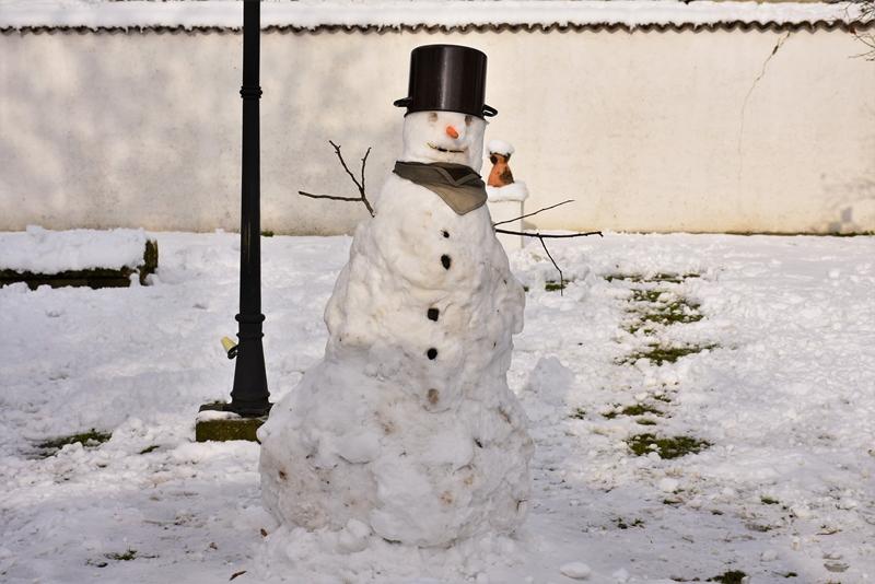 Снешко Белић у башти Ранчићеве куће